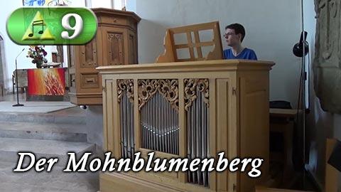 Das Vorschaubild von Folge 9 von Hyrule Harmonics (Der Mohnblumenberg)