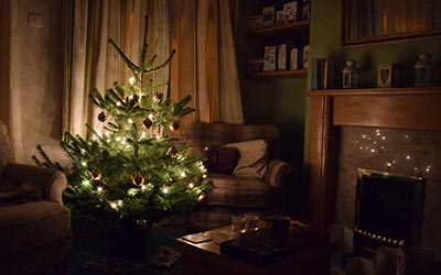 A little Christmas tree, bought and decorated by Tim and Sophie today. What a nice Christmassy atmosphere!