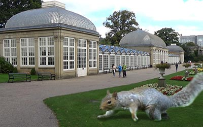 The main building of the botanical gardens. I have to confess that the squirrel was a little bit smaller...